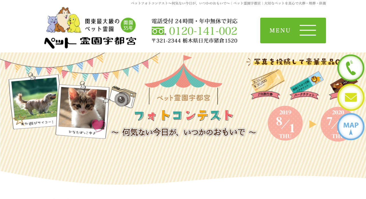 ペット霊園宇都宮フォトコンテスト【2020年7月30日締切】
